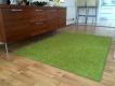 Kusový koberec Color Shaggy - zelené jablko - obdélník