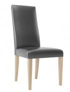 Jídelní židle KAMA 101