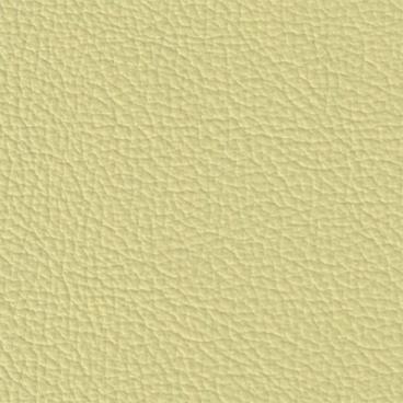 kůže Magnolia